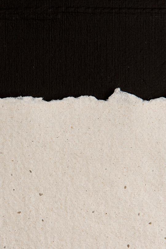 Naravni rob semenskega papirja