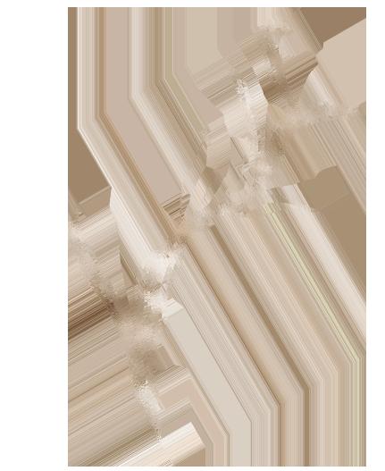 Okrasna slika rastline